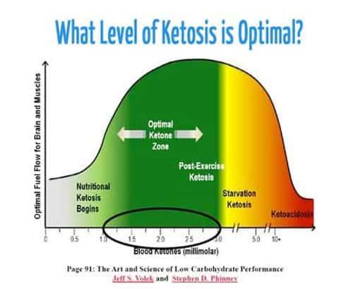optimal ketone levels